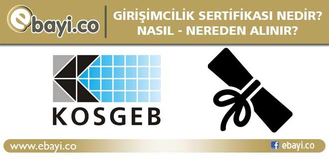 girişimcilik sertifikası